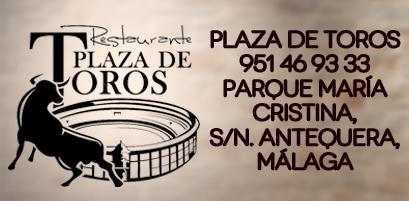 PlazaToros_Corporativo