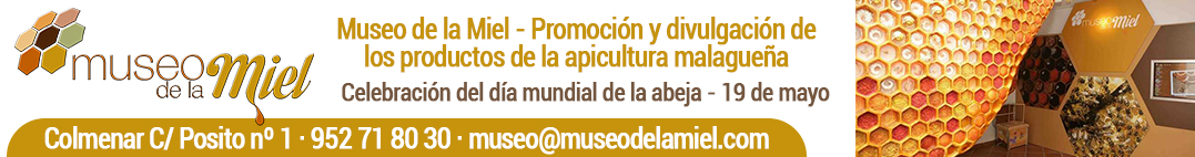 Top_museodelamiel_Genérico