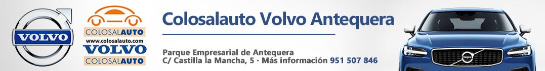 Top_Generico_Volvo