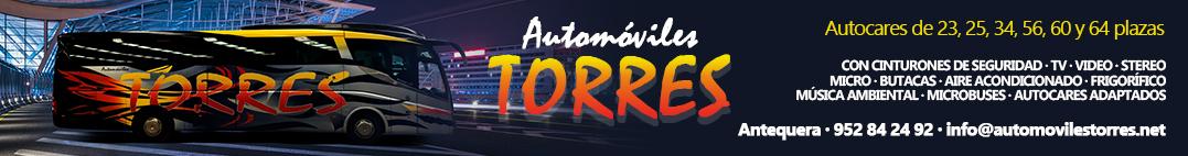 top_automoviles_torres